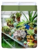 Greenhouse With Cactus Duvet Cover