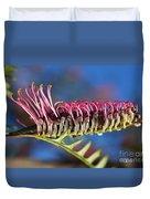 Grevillea Pink Australian Duvet Cover