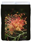 Grevillea  Superb Duvet Cover