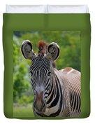 Grevy Zebra Duvet Cover