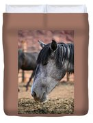 Grey Mare Duvet Cover
