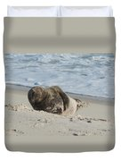 Grey Seal Pup On Beach Duvet Cover