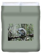 Grey Squirrel Duvet Cover