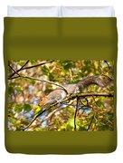 Grey Squirrel - Impressions Duvet Cover