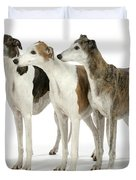 Greyhound Dogs Duvet Cover