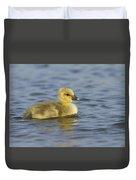 Greylag Goose Gosling Zeeland Duvet Cover