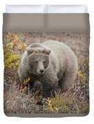 Grizzly Amongst Fall Foliage In Denali Duvet Cover