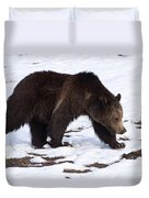 Grizzly Bear  #2463 Duvet Cover