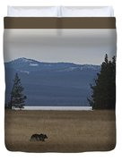 Grizzly Bear  #5270 Duvet Cover
