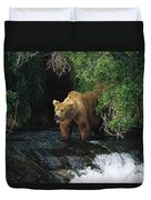 Grizzly Bear Fishing Brooks River Falls Duvet Cover