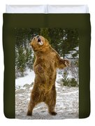Grizzly Standing Duvet Cover