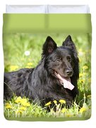 Groenendael Dog Duvet Cover