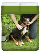 Grooming Bernese Mountain Puppy Duvet Cover