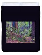Ground Level Landscape In Armstrong Redwoods State Preserve Near Guerneville-ca Duvet Cover