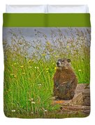 Groundhog At Point Amour In Labrador Duvet Cover
