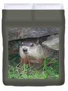 Groundhog Hiding In His Cave Duvet Cover