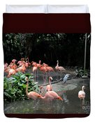 Group Of Flamingos And Lone Heron In Water Duvet Cover
