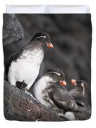 Group Of Parakeet Auklets, St. Paul Duvet Cover
