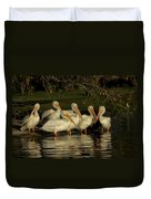 Group Of White Pelicans Duvet Cover