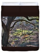 Guadalupe State Park Duvet Cover