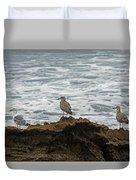 Gulls Podium  Duvet Cover
