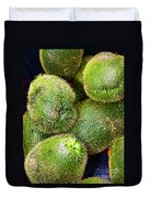 Hairy Peary Chayote Squash By Diana Sainz Duvet Cover