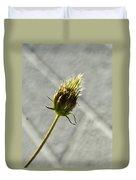 Hairy Plant Seed Pod 3 Duvet Cover