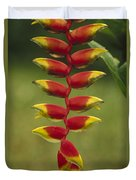 Hanging Heliconia Blooming In Rainforest Duvet Cover