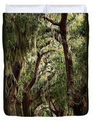 Hanging Moss And Giant Oaks Duvet Cover