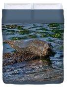 Harbor Seal At Low Tide Duvet Cover