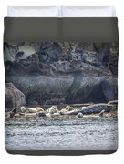 Harbour Seals Resting Duvet Cover