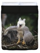 Harpy Eagle Threat Posture Amazonian Duvet Cover