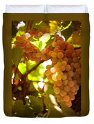 Harvest Time. Sunny Grapes IIi Duvet Cover