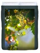 Harvest Time. Sunny Grapes V Duvet Cover