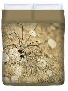 Harvestman Spider Duvet Cover