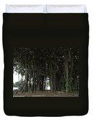 Hawaiian Banyan Tree - Hilo City Duvet Cover