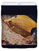 Hawaiian Butterfly Fish Duvet Cover