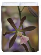 He Pua Ke Aloha - The Flower Of Love - Orchidea Tropicale Duvet Cover