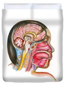Head And Neck Anatomy Duvet Cover