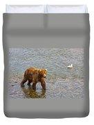 Head Grizzly Bear And Sea Gull In Moraine River In Katmai Np-ak  Duvet Cover