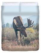 Head Lowered Bull Moose Duvet Cover