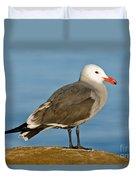 Heermanns Gull On Rock Duvet Cover