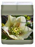 Helleborus Bright Duvet Cover