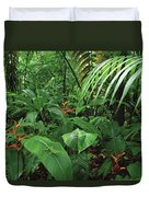 Heliconia And Palms With Green Anole Duvet Cover