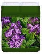 Heliotrope Flowers In Bloom Duvet Cover