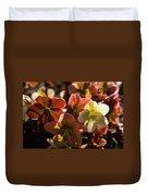 Helleborus Backlight Blossoms Duvet Cover
