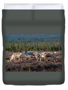 Herd Of Broad Pass Duvet Cover