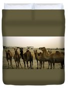 Herd Of Camels In A Farm, Abu Dhabi Duvet Cover