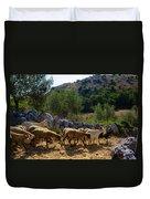 Herd Of Sheep In Tuscany Duvet Cover