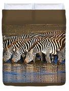 Herd Of Zebras Drinking Water Duvet Cover